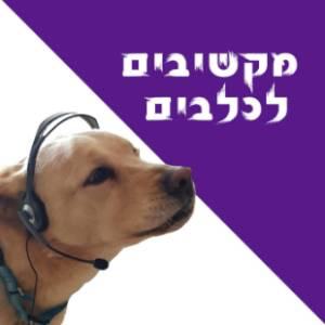 מקשיבים לכלבים